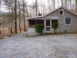 Secluded 2BR Pet-Friendly Cabin on Mountain Stream-Screen Porch