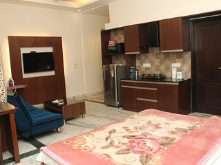 Safdarjung Luxurious 02 bedroom Serviced Apartment