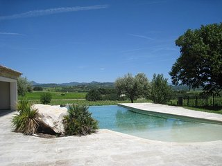Wonderful Provencal Mas with infinity pool, Buisson