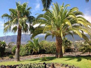 Relaxen unter Palmen Westseite