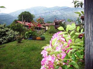 CASA RUBÓ - Vistas a la Sierra del Cuera - Especial familias con niños, Alles
