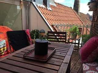 Big modern apartment with roof terrace in the heart of Copenhagen, Frederiksberg