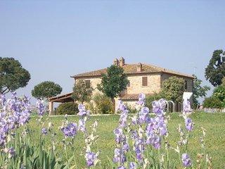 Brolio Quinto - Typical Farmhouse in tuscan countryside near Cortona