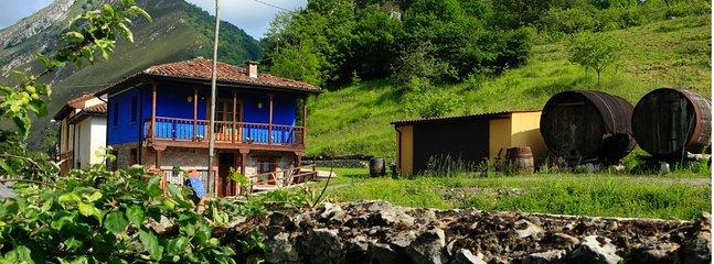 Apartament con jacuzzi Asturias. Romantica casa para 2, cerca de Cangas de Onis.