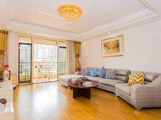 Big & bright 3 bedroom apt - People Square, Shanghai