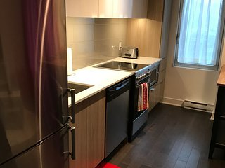 Charming brand new flat in the heart of downtown of Montreal