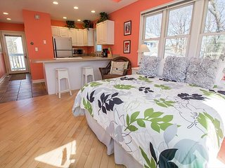 Couples Getaway! Short stays allowed. Studio with Queen + HOT TUB, Michigan City