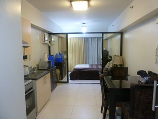 Condo for Rent, Makati, Philippines near Greenbelt Mall, Glorietta, Mall of Asia