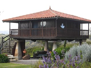 Suite -jardin con encanto proximo a Gijon., Villaviciosa