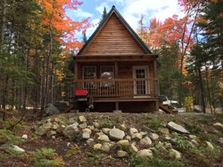 The Knotty Moose Cabin, Roxbury