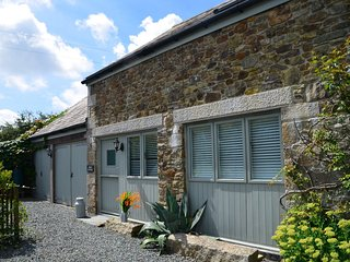 44396 Cottage in Port Isaac, Trelights