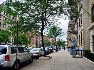 Excelente ubicacion apartamento dos habitaciones en zona segura y tranquila, Bronx