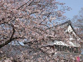 Tenjin/Free Wifi/7min Akasaka Sta./Fukuoka Castle