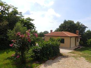 House 12212, Buje