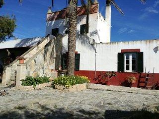 Villa Son Marsis, Ciutadella