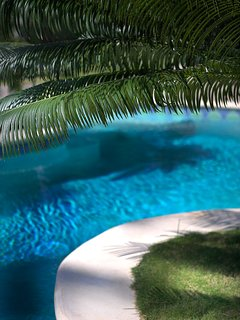 Shade on the pool