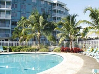 Elegant 1/1 Private Condo;  4 miles to St. Pete Beach, Ft. Desoto Park!