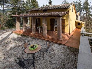 """Casa vacanze """"il Ginepro"""" immersa nel verde  a due passi da Cortona"""