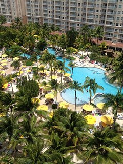 View of the Lazy River