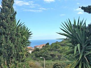 Charmning Typical Madeiran House, Caniço