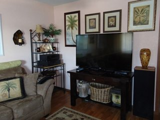 55 in HDTV with Blu-Ray Player