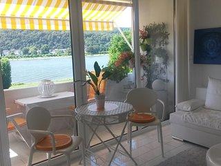 Ferienwohnung mit Top- Rheinblick