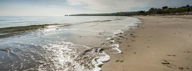 Walk, swim or explore our many beautiful beaches along the Jurassic Coast.