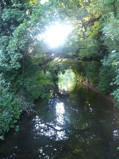 River Thames runs through the Estate