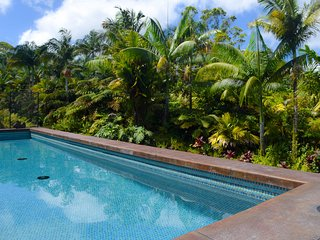 Jake''s Jungle Paradise: Large New Private Home w/Pool, Orchards, Gardens