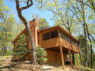 A Secluded Bearadise, Pigeon Forge
