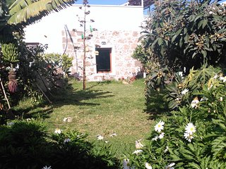 Villa tradicional canaria with garden and trees