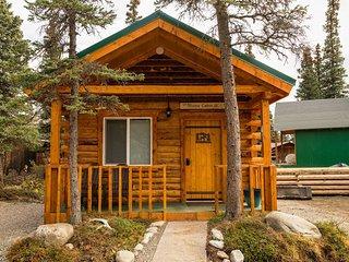 Cozy Moose Cabin, Healy