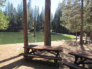 """Tree House"" mountain home 15 minutes from Yosemite, Oakhurst"