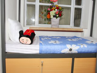 suite female 4 bed dormitory
