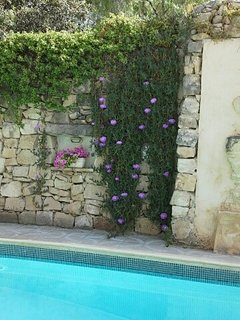 Beautiful 3 Bedroom Town House with Private Pool, St. Julian's