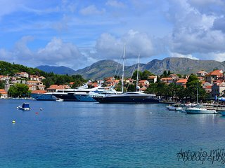 Charming 3BDMS ap. A&M in Cavtat close to beaches and pools with sea view