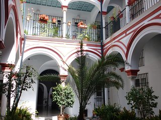 ACOGEDOR TRIPLEX EN CASA PALACIO S.XVIII