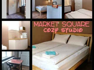 Market Square Apartments Studio with AC
