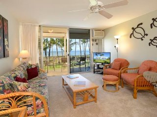 Hale Kai O'Kihei 2 Bedroom 216