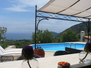 ALMOND LODGE in Mesudiye, Datça, 4+2 - shared pool