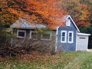 Artistic Cottage in the woods, perfect for artists, writers, nature lovers
