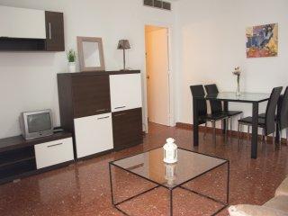 Tranquilo apartamento en zona centrica con cocina y baño recién reformados.