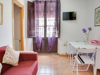 Centrico Apartamento en Granada