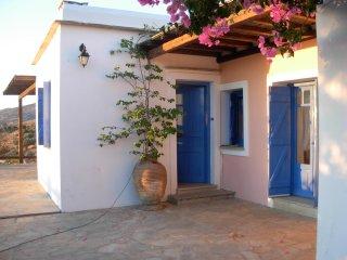 Andros Villa Seaview