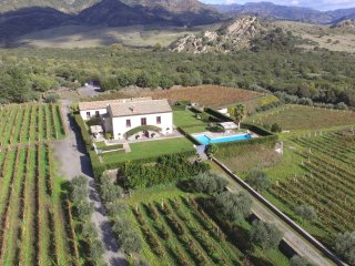 Luxury Villa BARONI:relax amid vineyards, olive trees and stunning views to Etna