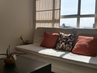 Apartamento Amoblado Barrio Ciudad Salitre Bogota. Vacaciones. Temporadas