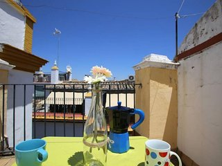 Chic & Modern Terrace Studio apartment in Casco Antiguo with WiFi