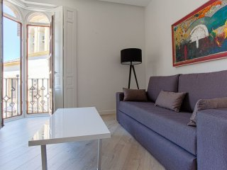Conde de Ibarra 2-1 apartment in Casco Antiguo with WiFi, integrated air conditi