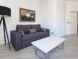 Conde de Ibarra 1-1 apartment in Casco Antiguo with WiFi, integrated air conditi