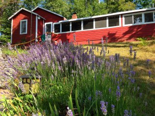 Secluded Lakefront Cottage ~ Near Interlochen, Sleeping Bear, Traverse City, Lake Ann